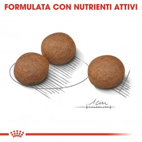 FORZA 10 Maintenance LIGHT Platessa con Sgombro 400 gr x 6 pz