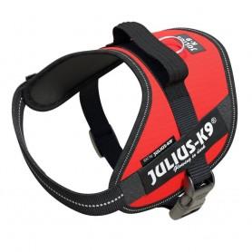 JULIUS-K9 Powerharness IDC Mis. Mini M Red