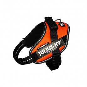 JULIUS-K9 Powerharness IDC Mis. Mini M Orange