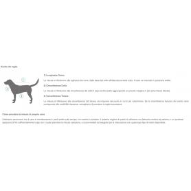 Hill's Prescription Diet d/d Feline Cervo e Piselli 1,5 kg